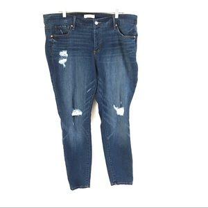 Loft Plus modern skinny jeans 18